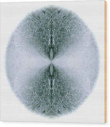 Ice Form Wood Print by John O Doherty