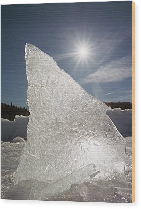 Ice Formation Along The Bow River Wood Print by Darwin Wiggett