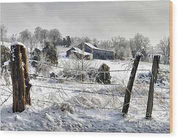 Ice Storm - D004825a Wood Print by Daniel Dempster