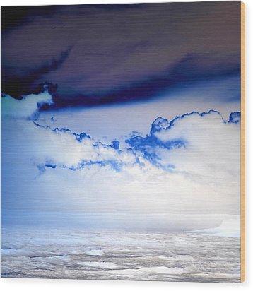 Ice Storm Wood Print by Sharon Lisa Clarke
