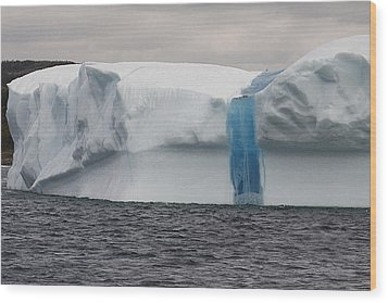 Wood Print featuring the photograph Iceberg by Eunice Gibb