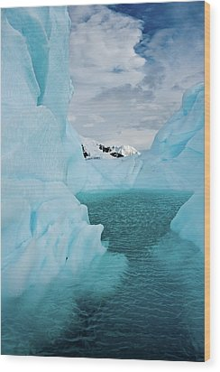 Iceberg Lagoon Wood Print by Duane Miller