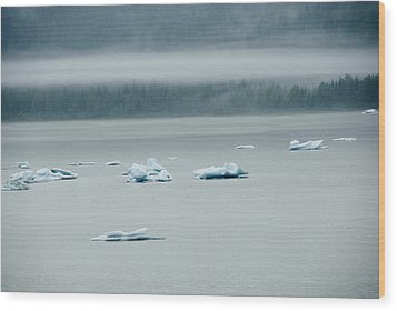 Icebergs Floating In The Sea Wood Print by James Forte