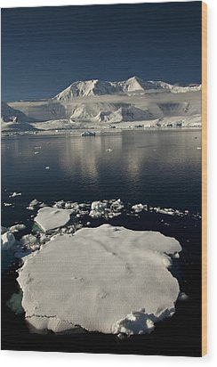Icefloe In The Neumayer Channel Wood Print by Colin Monteath