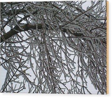 Icey Shield Wood Print by Joshua Dwyer