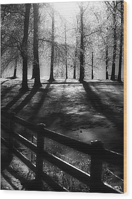 Icy Morning Wood Print