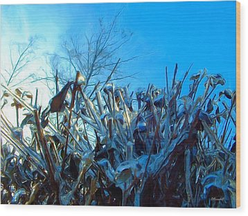 Icy Shell Wood Print by Dennis Lundell