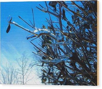 Icy Trim Wood Print by Dennis Lundell