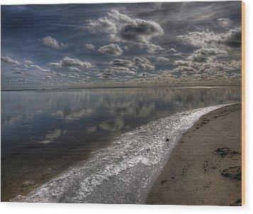 Icy Winter Beach Wood Print by Vicki Jauron