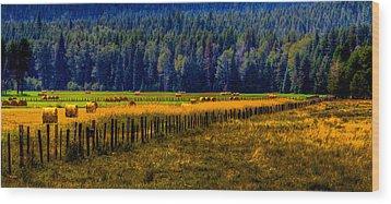 Idaho Hay Bales  Wood Print by David Patterson