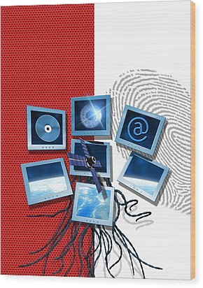 Identification And Surveillance Technology Wood Print by Victor Habbick Visions