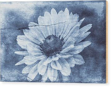 If Daisies Wore Blue Jeans Wood Print by Christine Annas