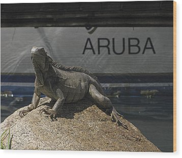 Wood Print featuring the photograph Iguana by David Gleeson