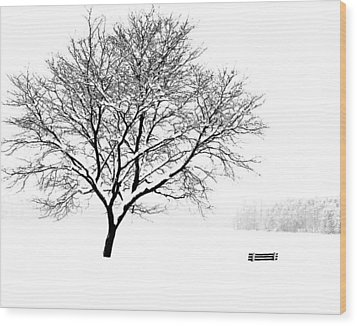 I'll Cover You Friend Wood Print by Jim McDonald Photography