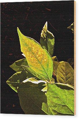 Illumined Wood Print by Rotaunja