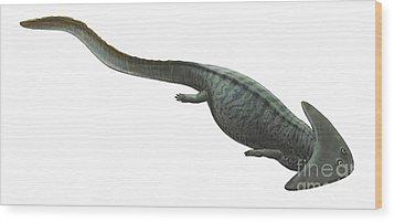 Illustration Of A Prehistoric Era Wood Print by Sergey Krasovskiy