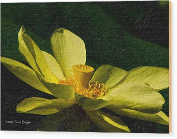 Wood Print featuring the photograph Impasto Lotus by Travis Burgess