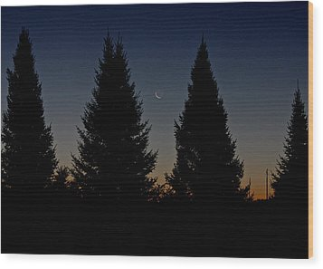 Wood Print featuring the photograph Impending Sunrise by Penny Meyers