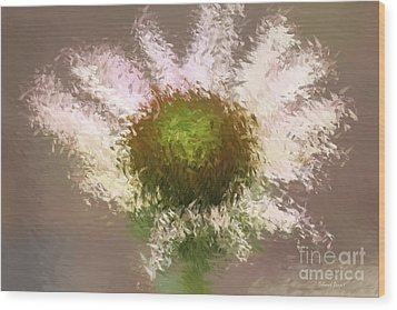 Impressionistic Echinacea Wood Print by Deborah Benoit