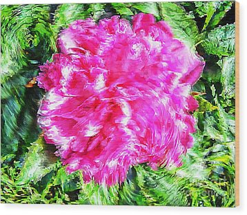 Impressionistic  Peony Wood Print by Barbara Griffin