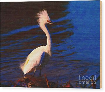 Impressions Of A Snowy Egret . Painterly Wood Print by Wingsdomain Art and Photography