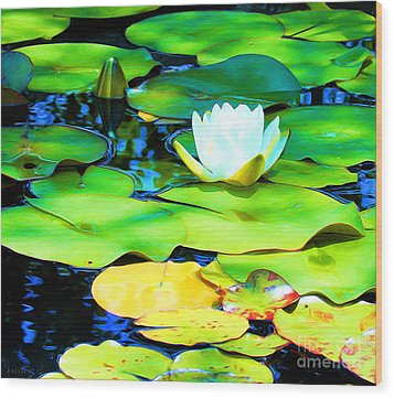 Impressions Of A White Water Lily Wood Print by J Jaiam