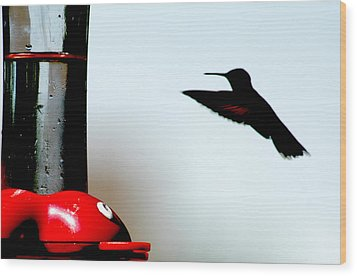 Wood Print featuring the photograph In Flight by Wanda Brandon