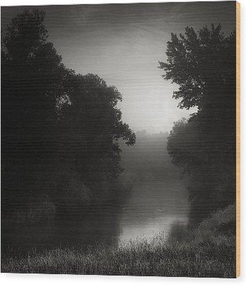 In Floodplain Forest Wood Print by Jaromir Hron
