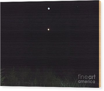 In The Company Of The Moon Wood Print by Doug Kean
