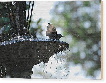 Wood Print featuring the photograph In The Cool Of The Morning #2 by Linda Cox