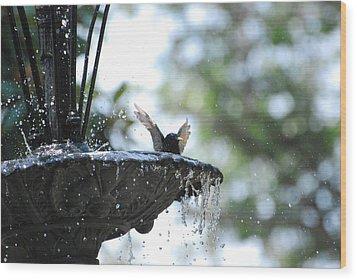 Wood Print featuring the photograph In The Cool Of The Morning #3 by Linda Cox