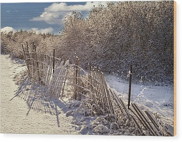 Wood Print featuring the photograph In Winter's Chill by Yelena Rozov