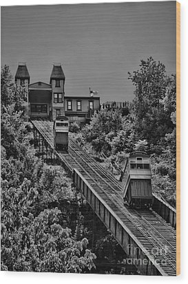 Incline Bw Wood Print by Arthur Herold Jr