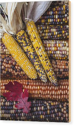 Indian Corn Wood Print by Garry Gay