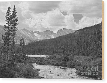 Indian Peaks Summer Day Bw Wood Print by James BO  Insogna