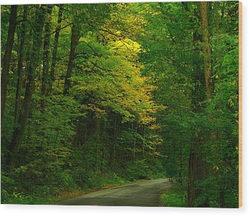 Indiana Road Wood Print by Joyce Kimble Smith