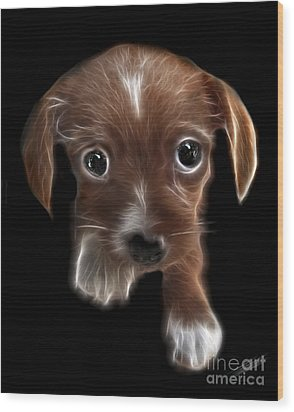 Innocent Loving Eyes	 Wood Print by Peter Piatt