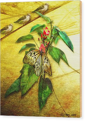Insect - Butterfly - Sparrow - Happy Summer  Wood Print by Yvon van der Wijk