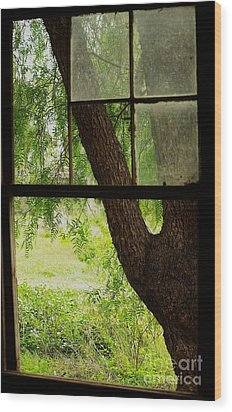 Wood Print featuring the photograph Inside Looking Out by Blair Stuart