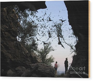 Wood Print featuring the photograph Inside The Bat Cave by Mark Robbins