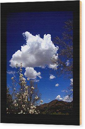 Wood Print featuring the photograph Inside The Mind Of Spring by Susanne Still