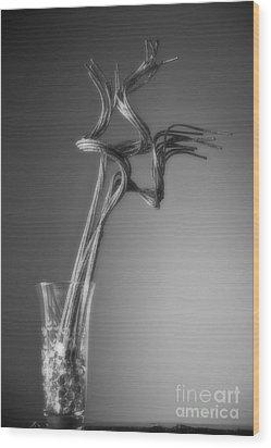 Insight Wood Print by Fred Lassmann