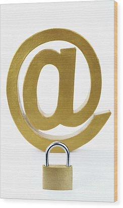 Internet Security Wood Print by Sami Sarkis