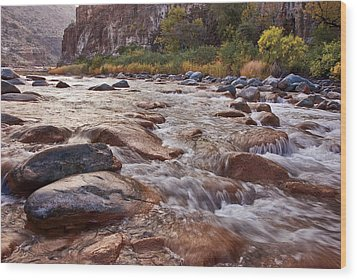 Intimate Waters On The Salt River Wood Print by Dave Dilli
