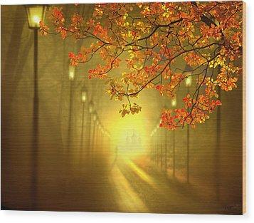 Into The Light Wood Print by Igor Zenin