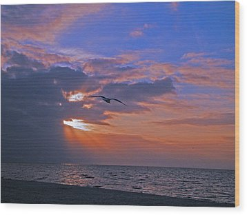 Wood Print featuring the photograph Into The Misty Morning Sun by Brian Wright
