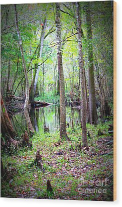 Into The Swamp Wood Print by Carol Groenen