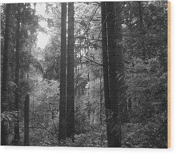 Into The Wood Wood Print