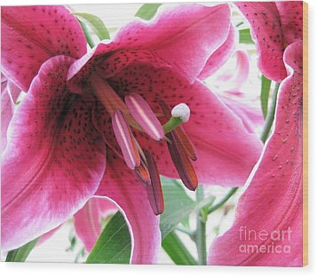 Intoxicating Aroma Lillie Wood Print by Judy Via-Wolff