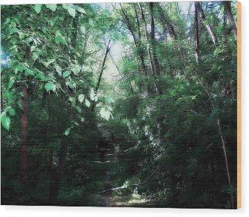 Iowa Forest Wood Print by Clarice  Lakota